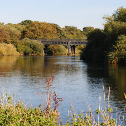 River Trent – Willington, Twyford, Barrow, Cuttle Brook