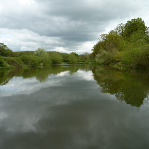 Callingwood Lane Lake